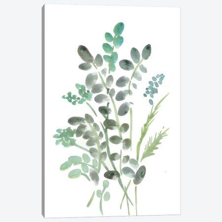Farmhouse Botanical I Canvas Print #CHP4} by Marcy Chapman Art Print