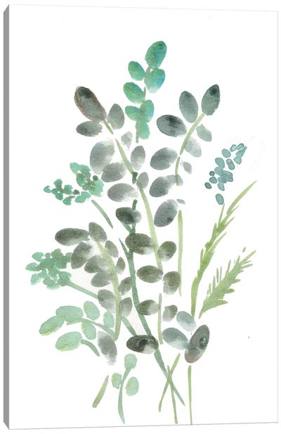 Farmhouse Botanical I Canvas Art Print
