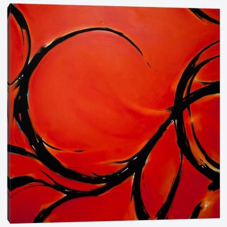 Red Dream Canvas Print #CHS11} by CH Studios Canvas Wall Art