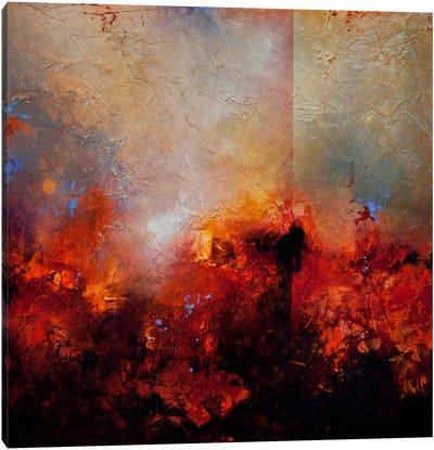 Red Earth Canvas Art Print