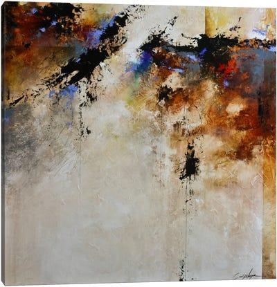 Fallen Light Canvas Print #CHS19