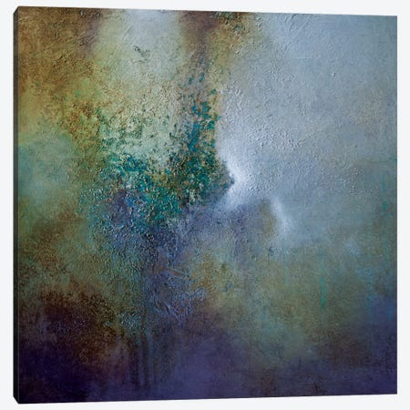 Mist Canvas Print #CHS27} by CH Studios Canvas Wall Art