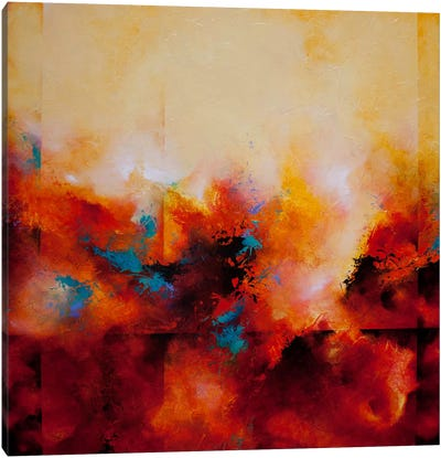 Light Strides Canvas Print #CHS4