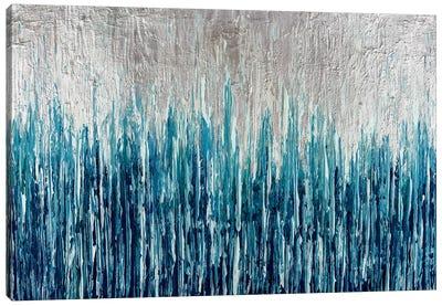 Silver Showers Canvas Art Print