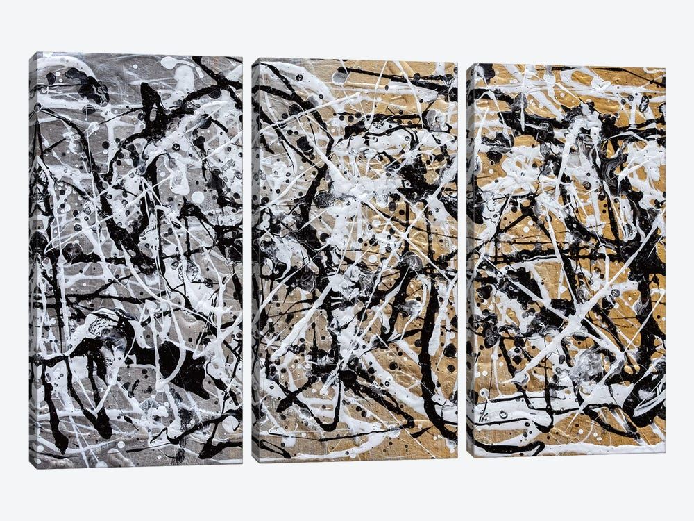 The Chaos II by Nikki Chauhan 3-piece Canvas Wall Art