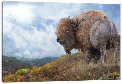 Golden Bison II Canvas Art Print