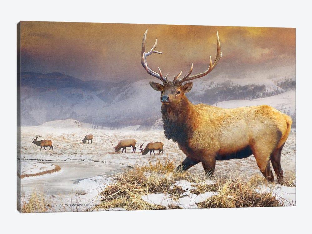 Jackson Refuge Elk by Christopher Vest 1-piece Canvas Artwork