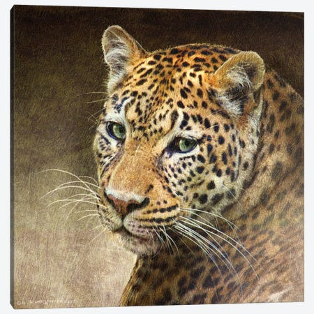 Leopard Canvas Print #CHV16} by Christopher Vest Canvas Wall Art