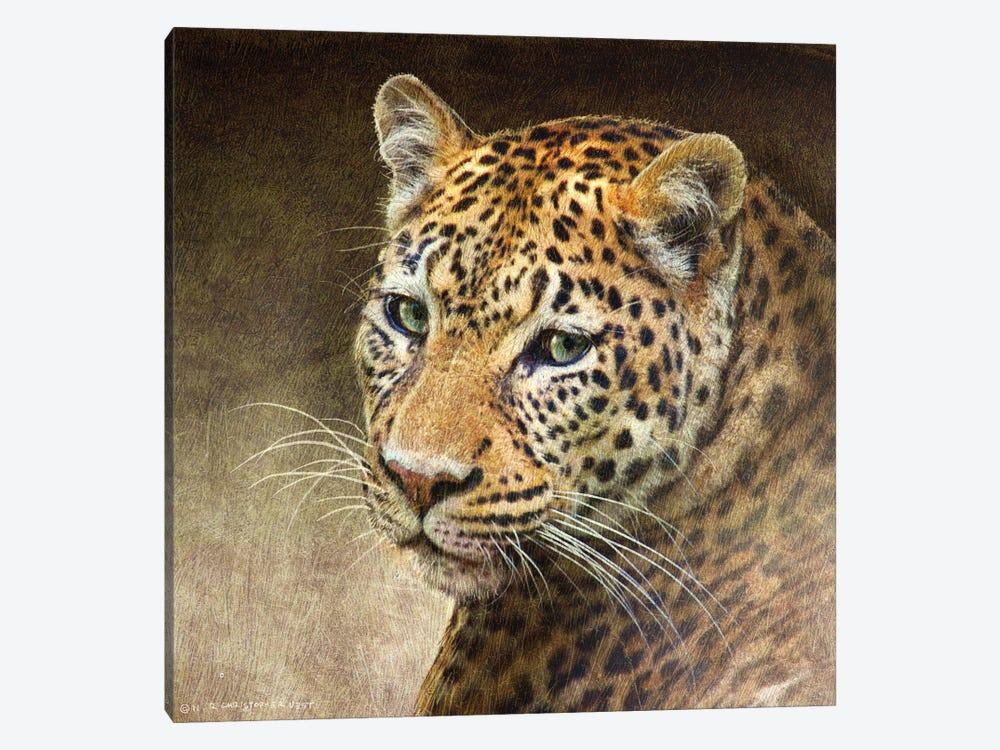 Leopard by Christopher Vest 1-piece Canvas Artwork