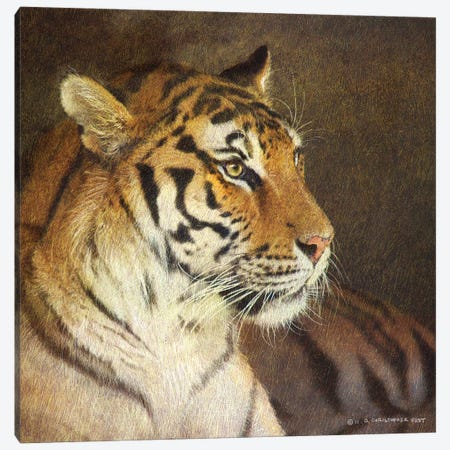 Tiger Canvas Print #CHV17} by Christopher Vest Canvas Artwork