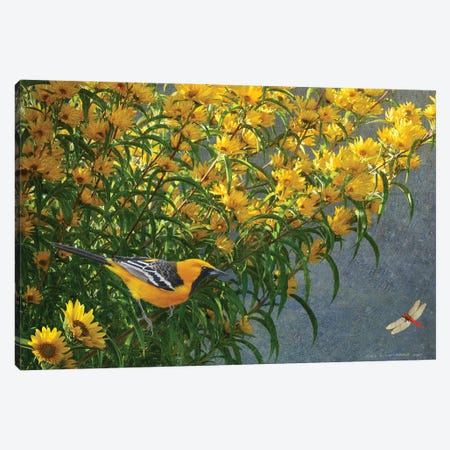 Yellow Flowers Oriole Canvas Print #CHV19} by Christopher Vest Canvas Print