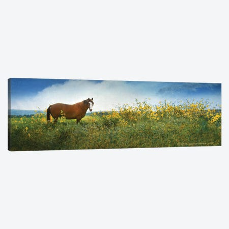 Horse in Flowers I Canvas Print #CHV24} by Christopher Vest Canvas Art Print
