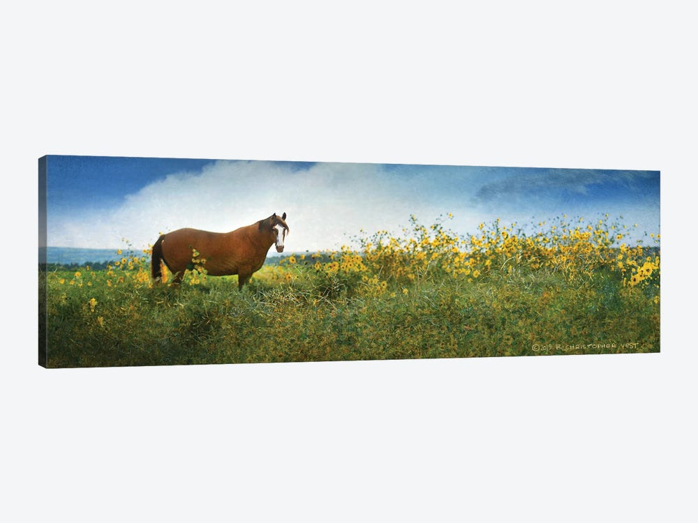 Horse in Flowers I by Christopher Vest 1-piece Art Print