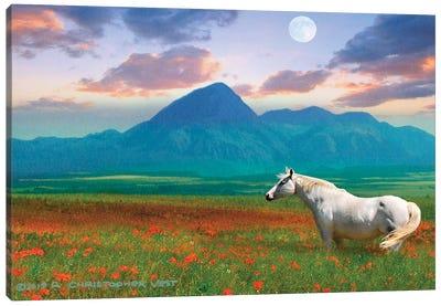 Horse in Flowers II Canvas Art Print