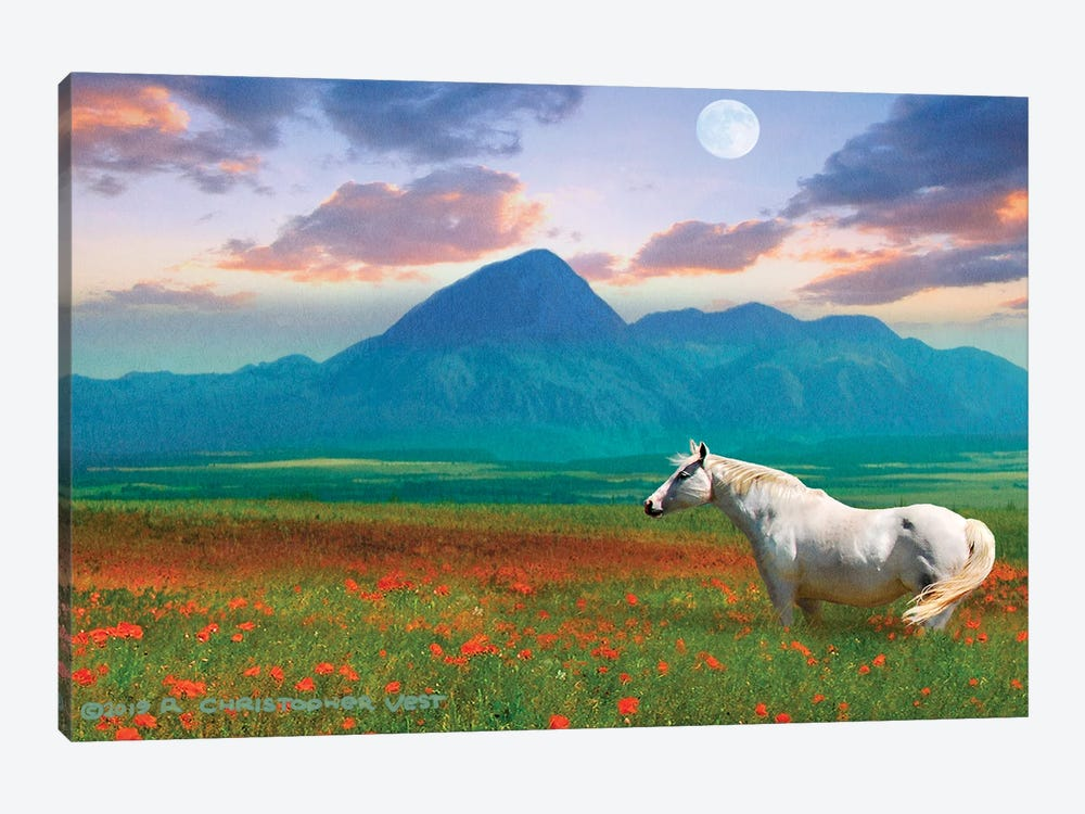 Horse in Flowers II by Christopher Vest 1-piece Canvas Wall Art