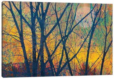 Meadow Trees I Canvas Art Print