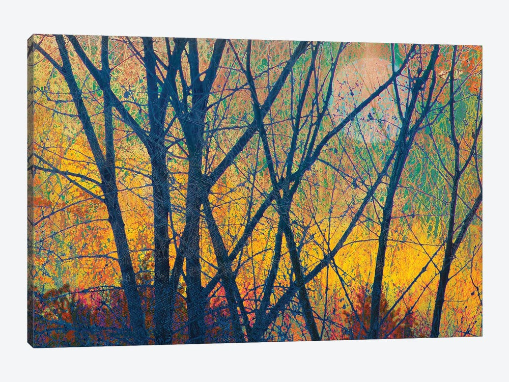 Meadow Trees I by Christopher Vest 1-piece Canvas Wall Art