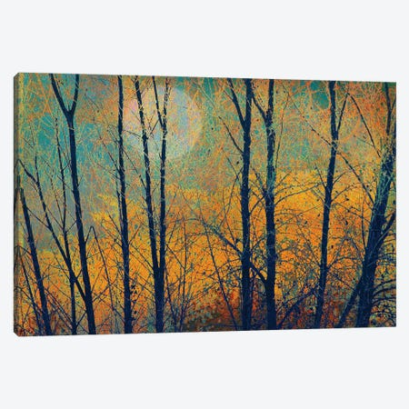 Meadow Trees II Canvas Print #CHV28} by Christopher Vest Canvas Wall Art