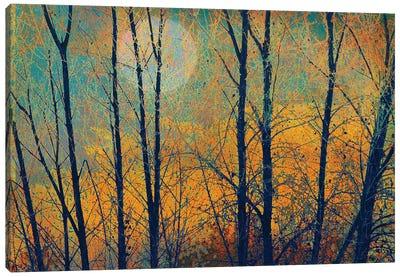Meadow Trees II Canvas Art Print