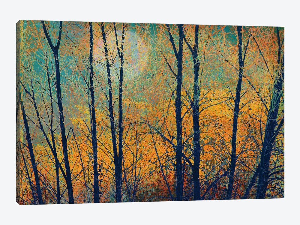 Meadow Trees II by Christopher Vest 1-piece Canvas Print