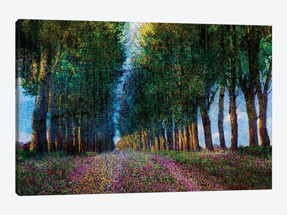 Row of Trees Provence by Christopher Vest 1-piece Canvas Art