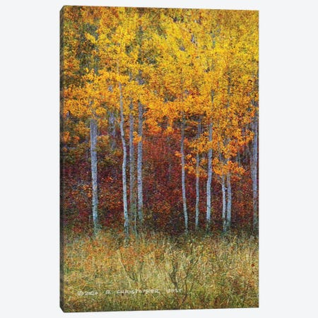 Aspen Forest Autumn Left Canvas Print #CHV30} by Christopher Vest Art Print