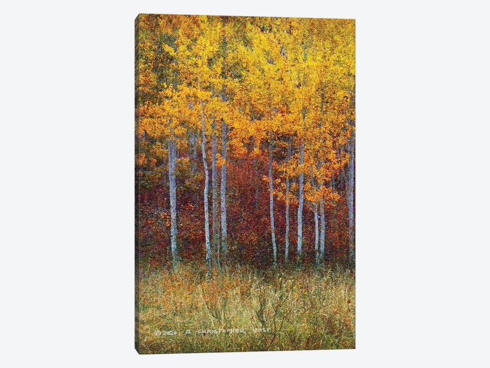 Aspen Forest Autumn Left by Christopher Vest 1-piece Canvas Artwork