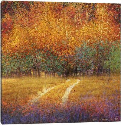 Bright Cottons Canvas Art Print