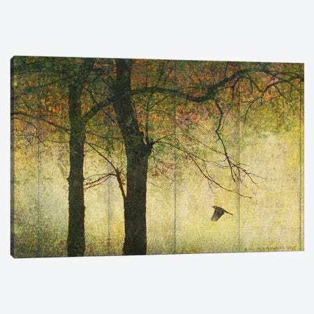 Forest Goldleaf Canvas Print #CHV36} by Christopher Vest Canvas Art