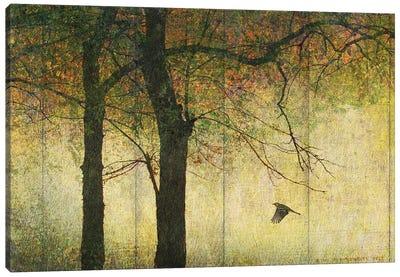 Forest Goldleaf Canvas Art Print