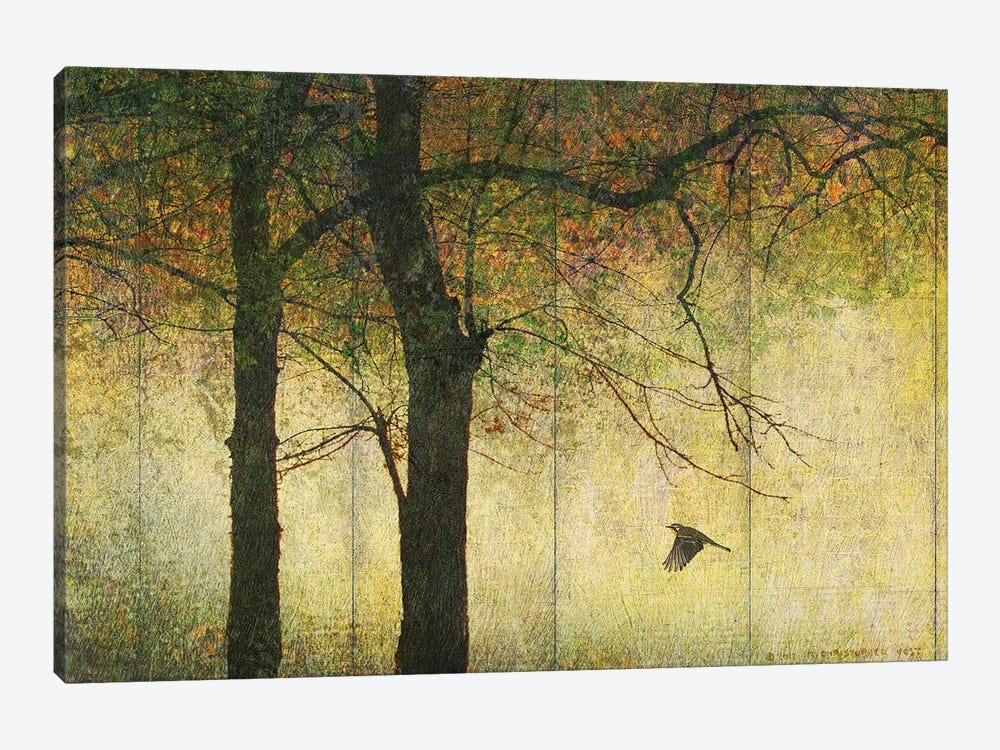 Forest Goldleaf by Christopher Vest 1-piece Canvas Wall Art