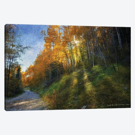 Shadowed Mtn Road Canvas Print #CHV39} by Christopher Vest Canvas Art Print