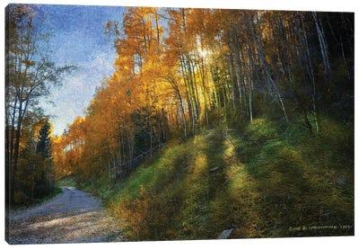 Shadowed Mtn Road Canvas Art Print