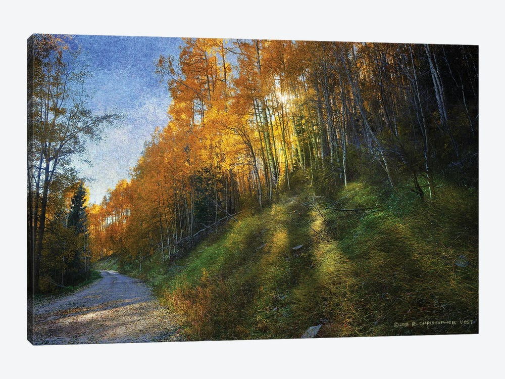 Shadowed Mtn Road by Christopher Vest 1-piece Canvas Art Print