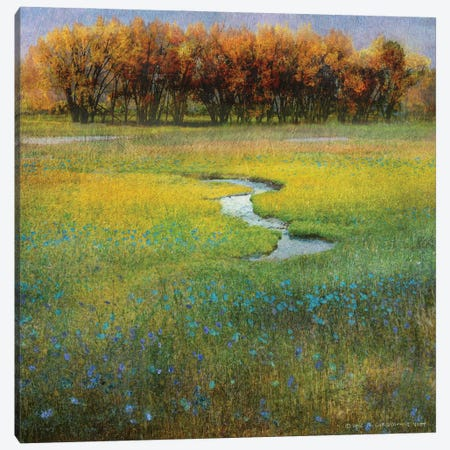 Meadow Flowers I Canvas Print #CHV40} by Christopher Vest Canvas Art