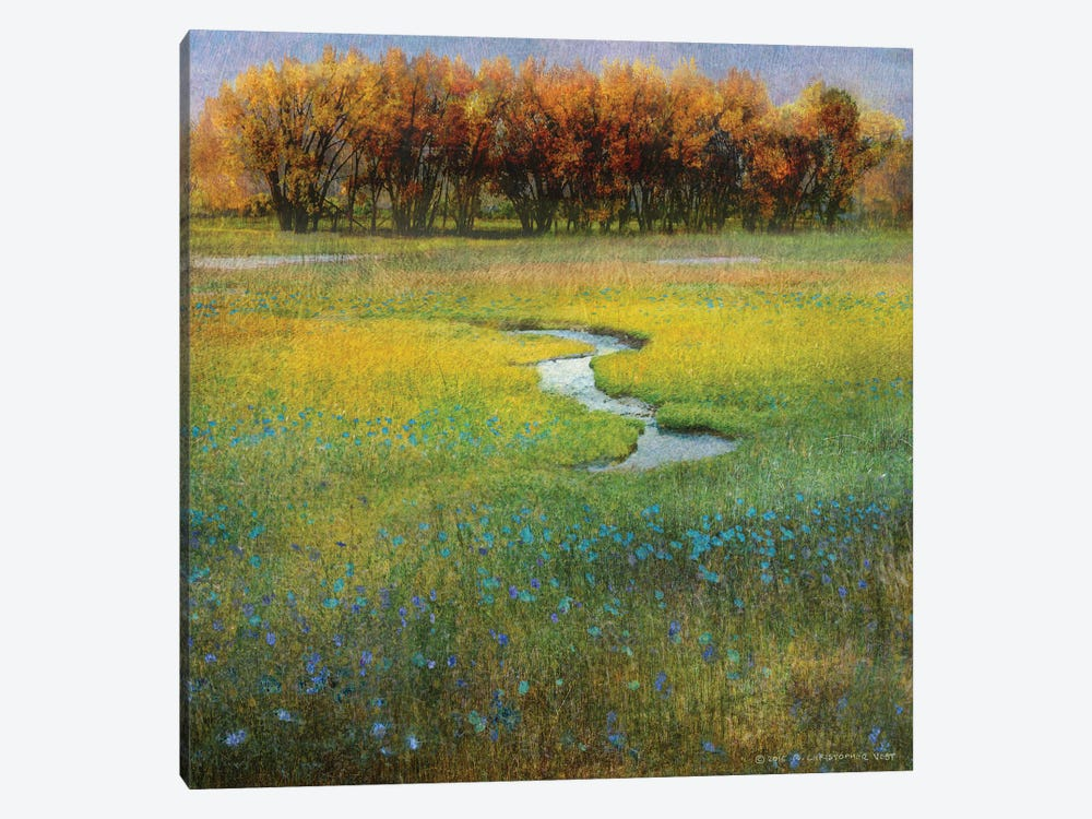 Meadow Flowers I by Christopher Vest 1-piece Canvas Print