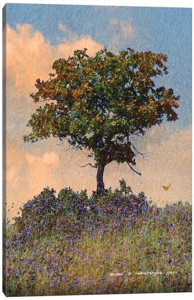 Oak Tree Right Canvas Art Print