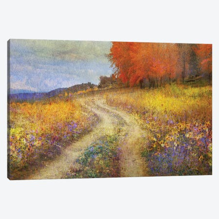 Road By The Lake Canvas Print #CHV44} by Christopher Vest Art Print