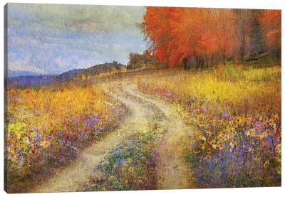 Road By The Lake Canvas Art Print