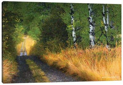 Road Thru The Trees Canvas Art Print