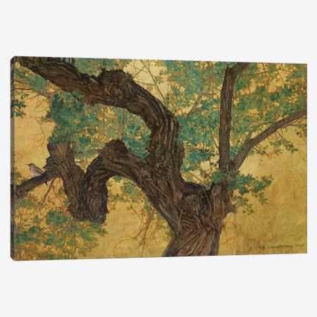 Trunk On Goldleaf Canvas Print #CHV46} by Christopher Vest Canvas Art Print
