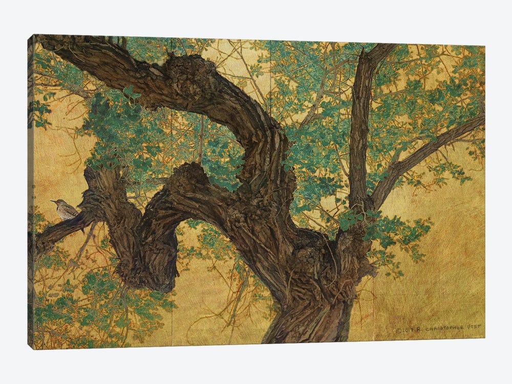 Trunk On Goldleaf by Christopher Vest 1-piece Canvas Art Print