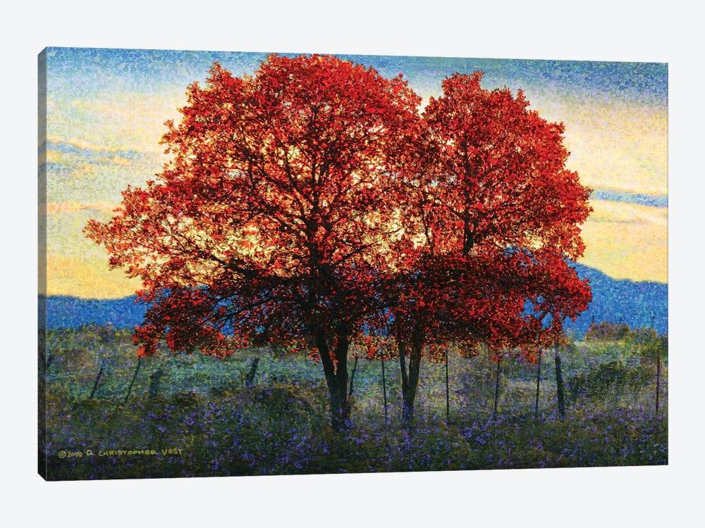 Twin Oaks by Christopher Vest 1-piece Canvas Wall Art