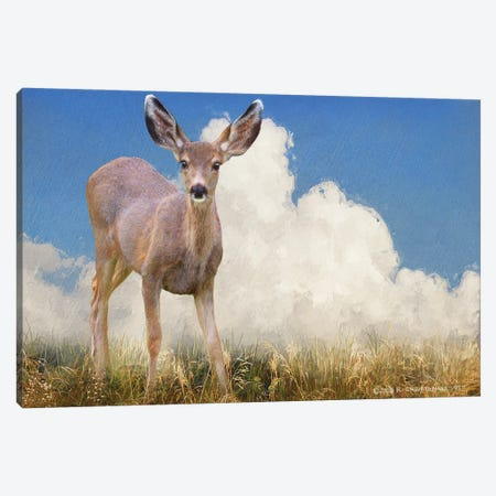 In The Meadow I Canvas Print #CHV48} by Christopher Vest Canvas Wall Art
