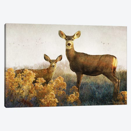 Doe And Fawn Canvas Print #CHV4} by Christopher Vest Canvas Art Print