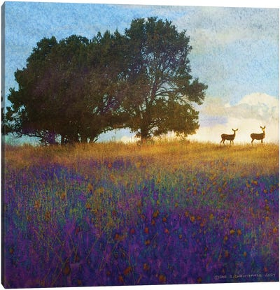 Tree Hill Flowers Canvas Art Print