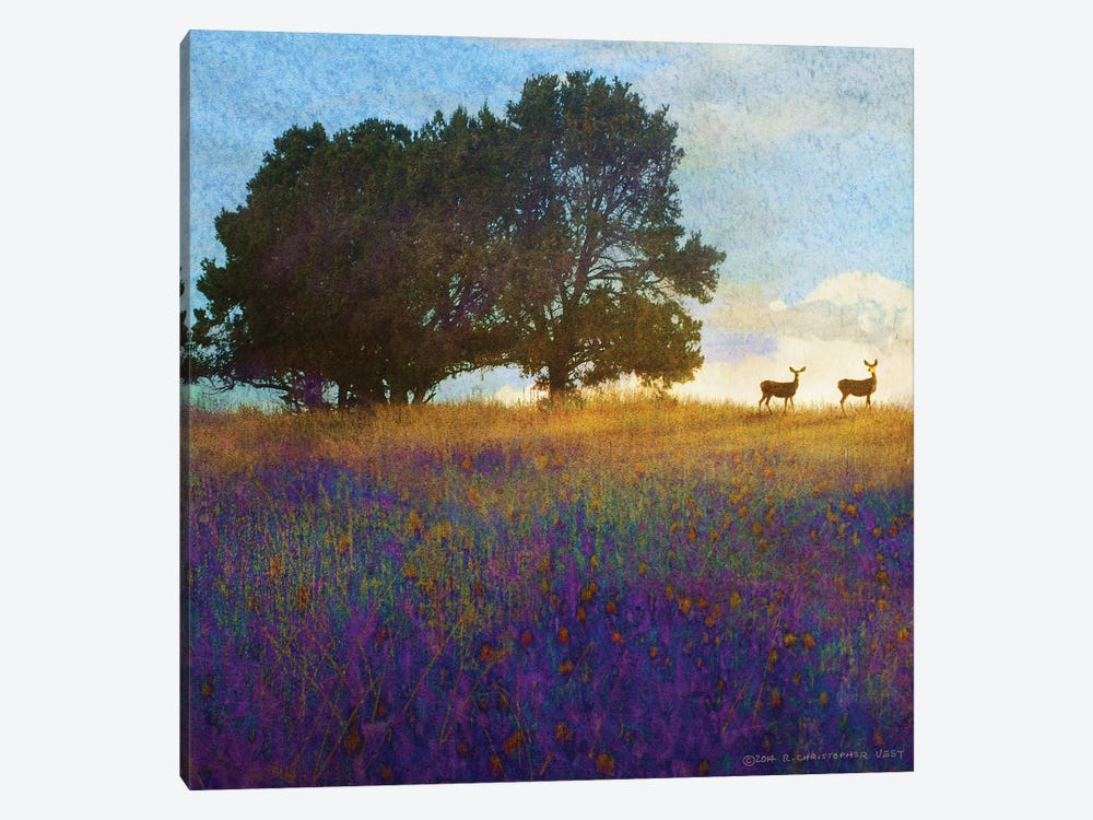 Tree Hill Flowers by Christopher Vest 1-piece Canvas Art
