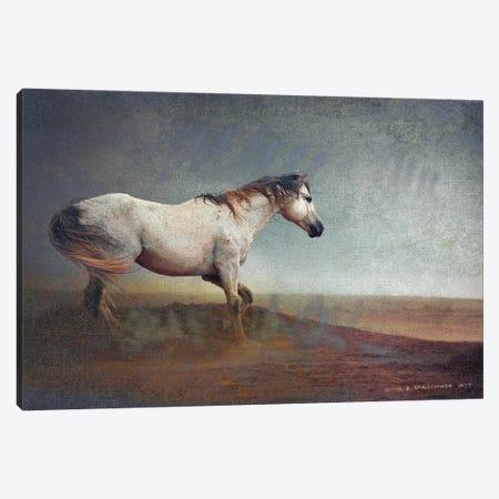 White Horse Dust Storm Canvas Print #CHV7} by Christopher Vest Canvas Art Print