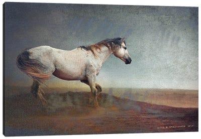 White Horse Dust Storm Canvas Art Print