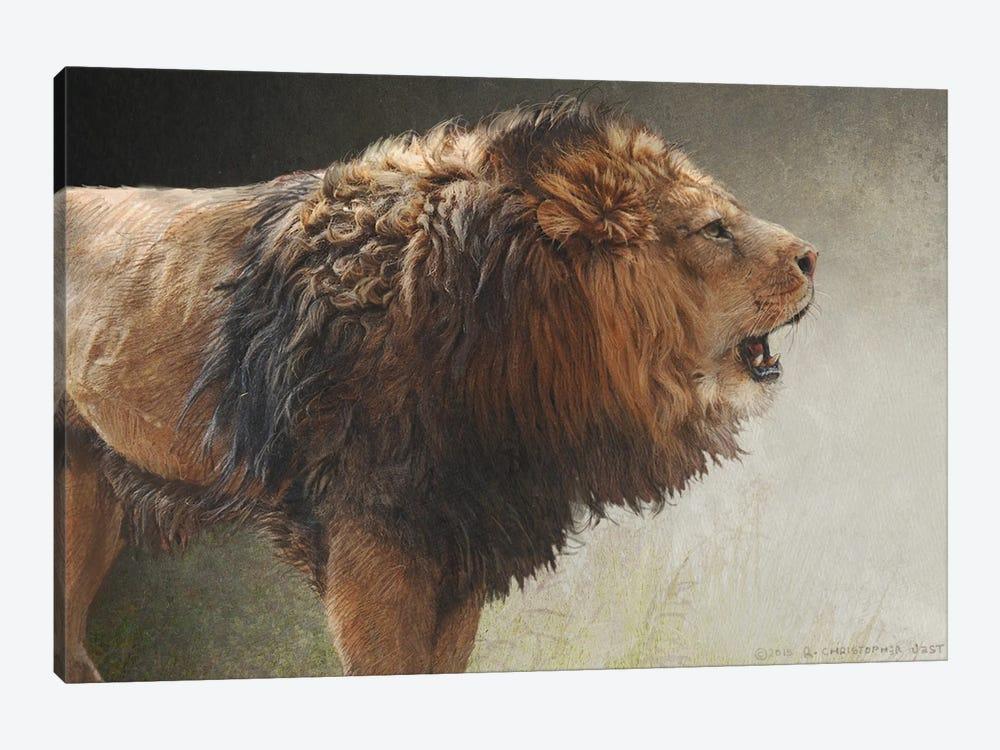 Roaring Lion by Christopher Vest 1-piece Canvas Art